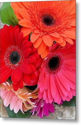 Daisy Bouquet Metal Print by Lynnette Johns