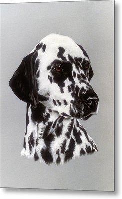 Dalmatian Metal Print by Patricia Ivy