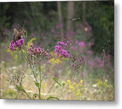 Day In The Meadow Metal Print by Trendle Ellwood