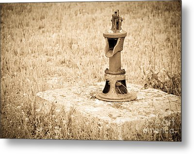 Days Gone By Metal Print by Cheryl McClure