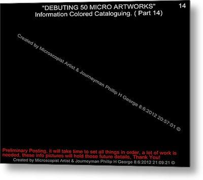 Debuting 50 Micro Artworks Part 14 Metal Print by Phillip H George
