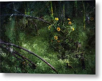 Deep Into Nature Metal Print by Bonnie Bruno