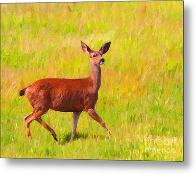 Deer In The Meadow Metal Print by Wingsdomain Art and Photography