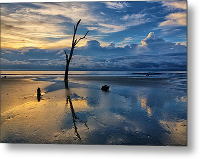 Defying The Elements Metal Print by Claudia Domenig