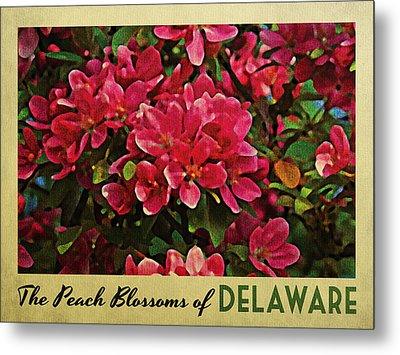 Delaware Peach Blossoms Metal Print by Flo Karp