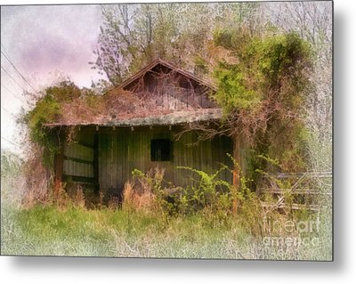 Derelict Shed Metal Print by Susan Isakson