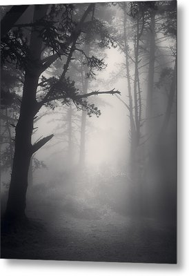 Desire Realized Metal Print by Mark Singles