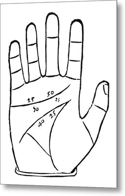 Diagram Used In Palmistry, 16th Century Metal Print by Middle Temple Library