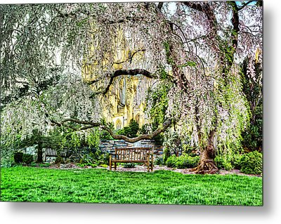 Digital Liquid -  Cherry Blossoms At The Washington National Cathedral Metal Print by Metro DC Photography
