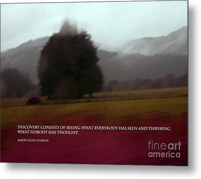 Discovery Consists Of Seeing.. Metal Print by Karen Lewis