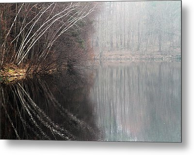 Divided By Nature Metal Print by Karol Livote