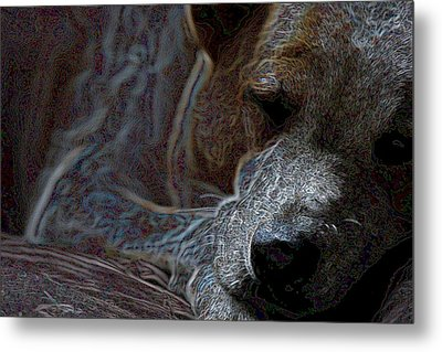 Do Not Disturb Metal Print by One Rude Dawg Orcutt