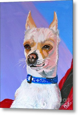 Doggie Know It All Metal Print by Phyllis Kaltenbach
