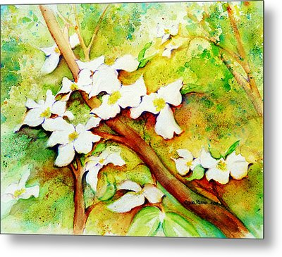 Dogwood Flowers Metal Print by Carla Parris