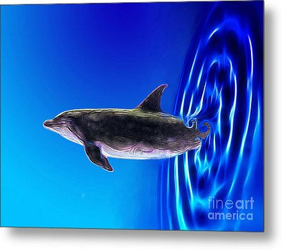 Dolphin Zoom Metal Print by Methune Hively
