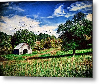 Down On The Farm Metal Print by Darren Fisher