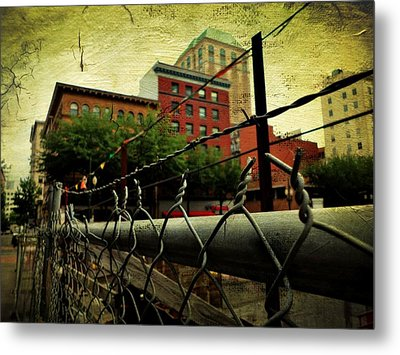 Down The Fence Metal Print by Cathie Tyler