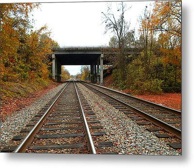 Down The Lines Metal Print by Sandi OReilly
