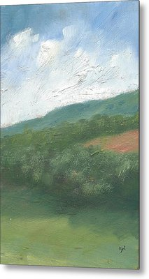 Downland And Trees Metal Print by Alan Daysh