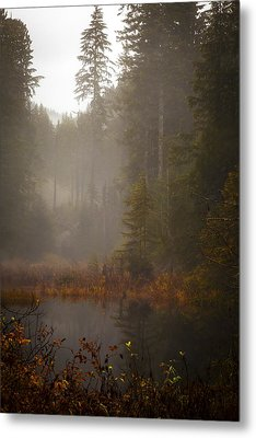Dream Of Autumn Metal Print by Mike Reid