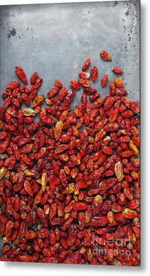 Dried Chili Peppers Metal Print by Carlos Caetano