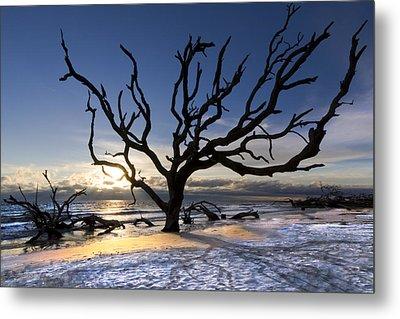 Driftwood Beach At Dawn Metal Print by Debra and Dave Vanderlaan