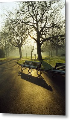 Dublin - Parks, St. Stephens Green Metal Print by The Irish Image Collection