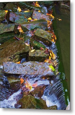 Early Autumn 2 Metal Print by Todd Sherlock