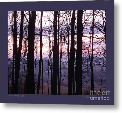 Early Morning Hues Metal Print by Patricia Overmoyer