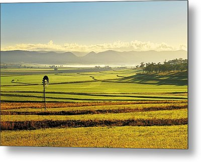 Early Morning Pastoral Scene With Keyline Plowing Near Warwick, Queensland, Australia Metal Print by Peter Walton Photography