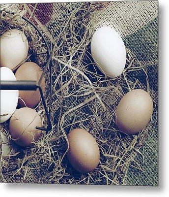 Eggs Metal Print by Joana Kruse