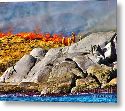 Elements Metal Print by Joanne Kocwin