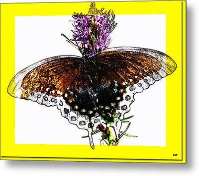 Enchanted Wings Card Metal Print by Debra     Vatalaro