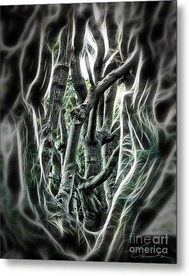 Entangled Worlds Metal Print by Danuta Bennett