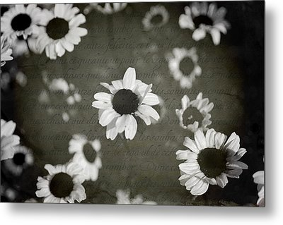 Even In Darker Days Metal Print by Laurie Search