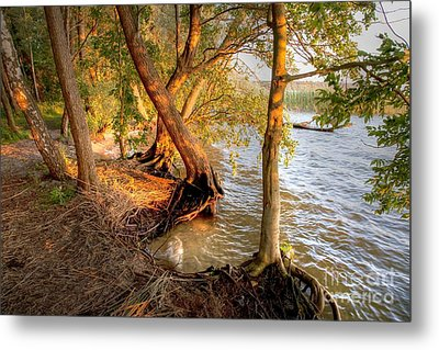 Evening At The Lake Metal Print by Heiko Koehrer-Wagner