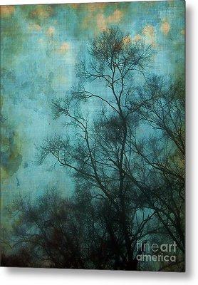 Evening Sky Metal Print by Judi Bagwell