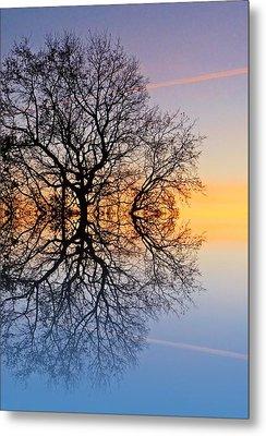 Evening Sky Trails Metal Print by Sharon Lisa Clarke