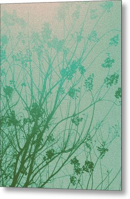 Fading Light Metal Print by Bethany Fulford