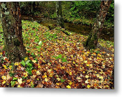 Fall Along Middle Fork Metal Print by Thomas R Fletcher