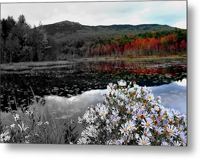 Fall Creeps In Metal Print by Rick  Blood