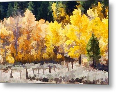 Fall In The Sierra Metal Print by Carol Leigh