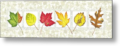 Fall Leaf Panel Metal Print by JQ Licensing