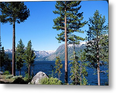 Fallen Leaf Lake Area With Pine Trees In Foreground, Lake Tahoe, California, Usa Metal Print by Ellen Skye