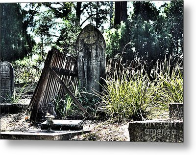 Family Ties Metal Print by Joanne Kocwin