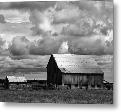 Father And Son Metal Print by Darren Creighton