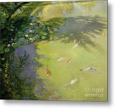 Featherplay Metal Print by Timothy Easton