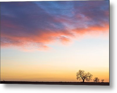 Feeling Small Metal Print by James BO  Insogna