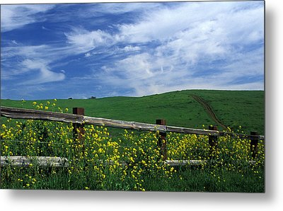 Fence And Flowers Metal Print by Kathy Yates