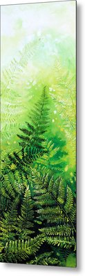 Ferns 4 Metal Print by Hanne Lore Koehler